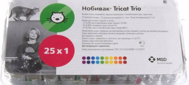 Вакцина «нобивак трикет трио» для кошек: инструкция по применению