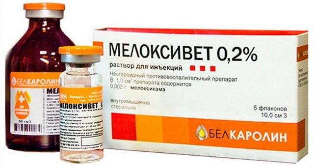 Мелоксикам таблетки: инструкция по применению