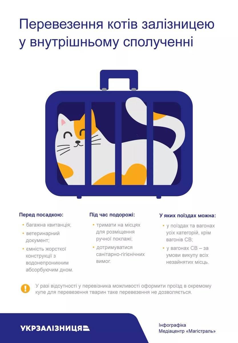 Как перевезти животное в самолете