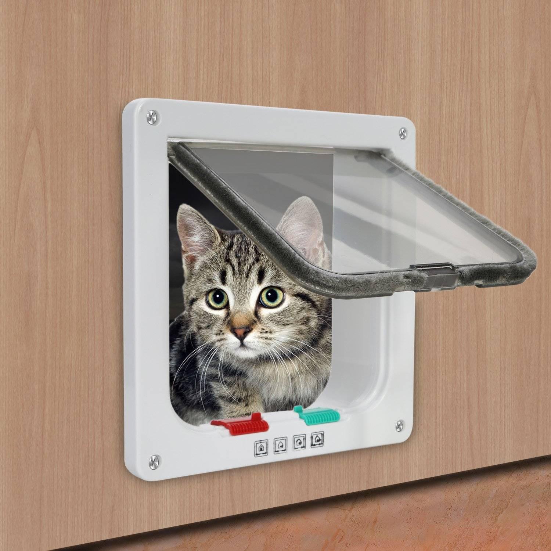 Как выбрать дверку для кошки для входных дверей или сделать своими руками?