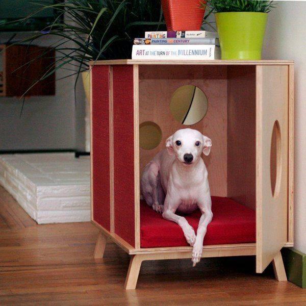 Зачем человеку нужна собака - сайт valean-griff!