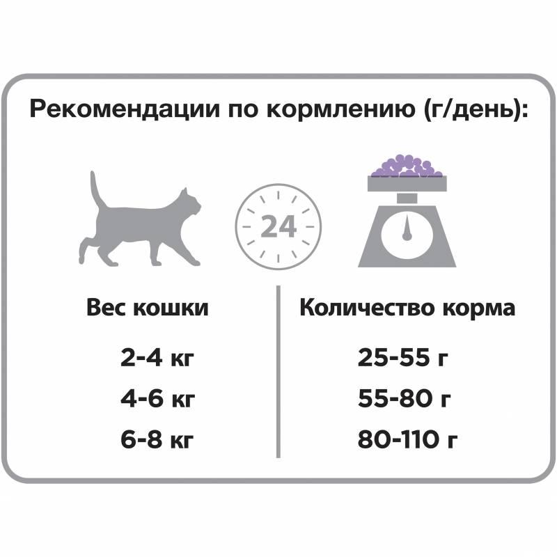 Чем кормить беременную кошку