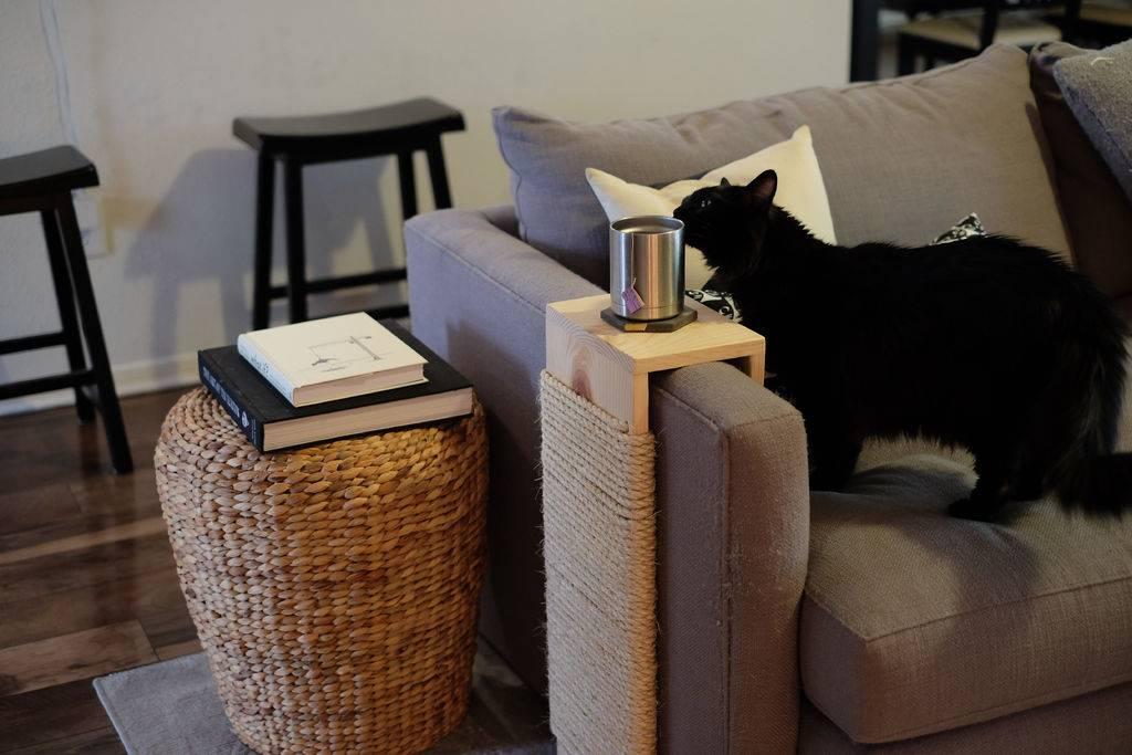 Как быстро и безопасно для кота отучить его драть мебель?