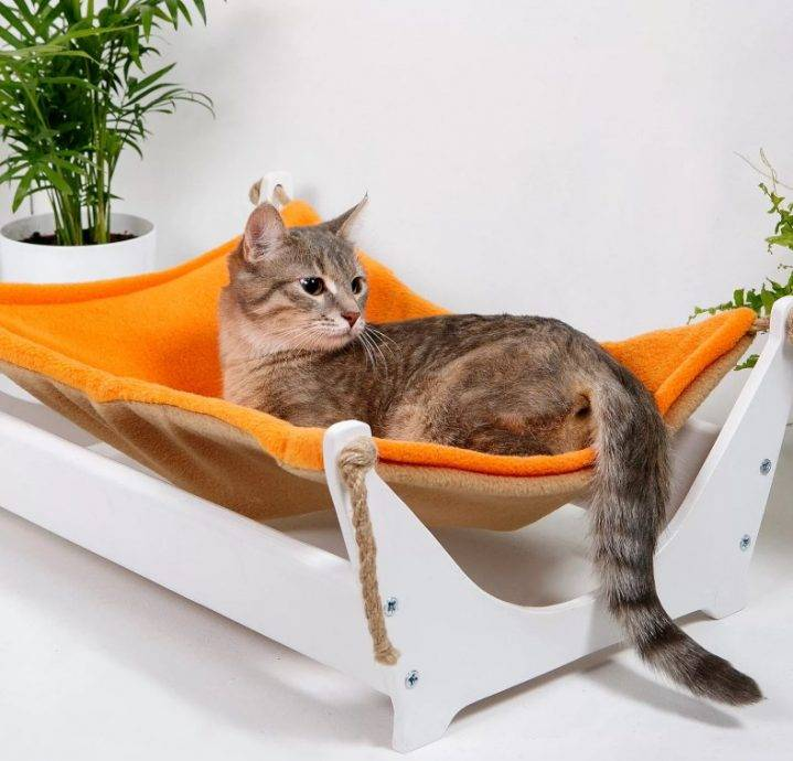 Гамак (лежанка) для кошки на батарею – как сделать своими руками?