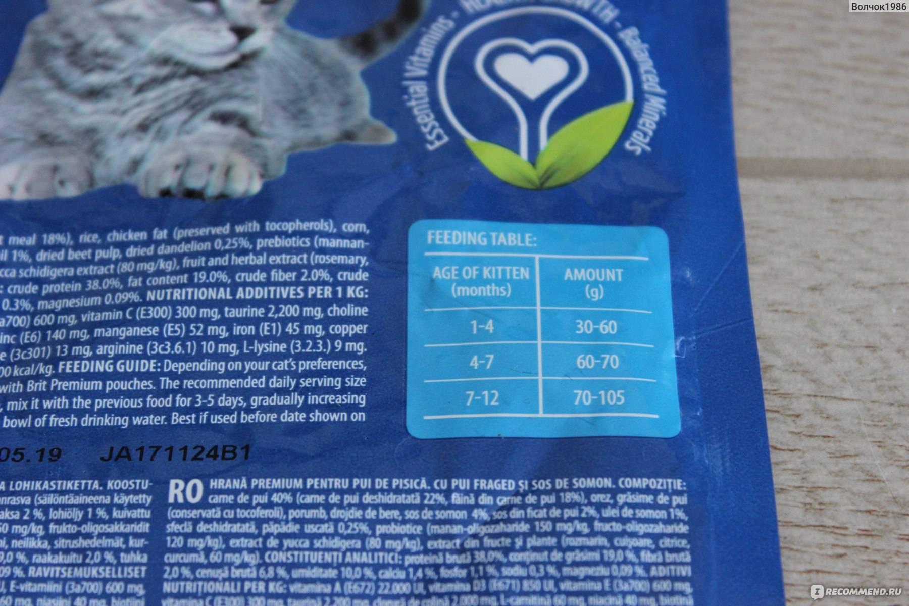 Влажный и сухой корм брит для кошек: состав, отзывы и советы ветеринаров