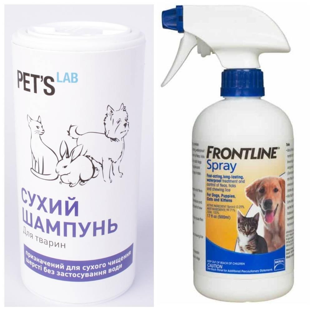 Народные средства от блох у кошек: как вывести насекомых в домашних условиях
