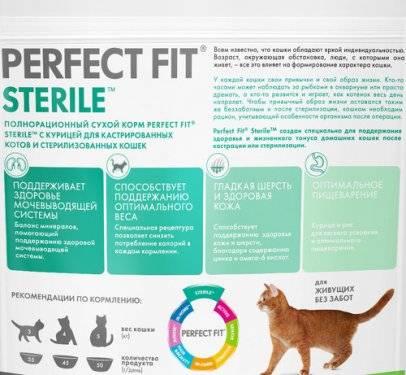 Как правильно кормить кастрированного кота
