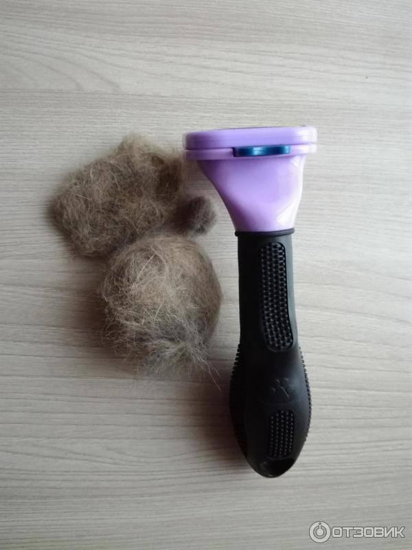 Фурминатор для кошек, расчески-чесалки, триммеры, пуходерки, щетки и др предметы для вычесывания: особенности выбора и использования, отзывы