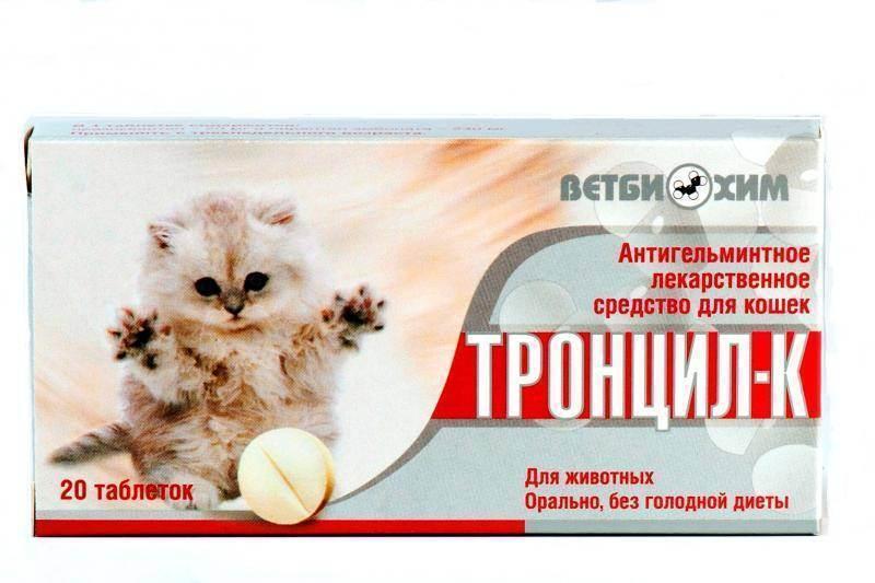 Паста для выведения шерсти из желудка кошки в домашних условиях: инструкция