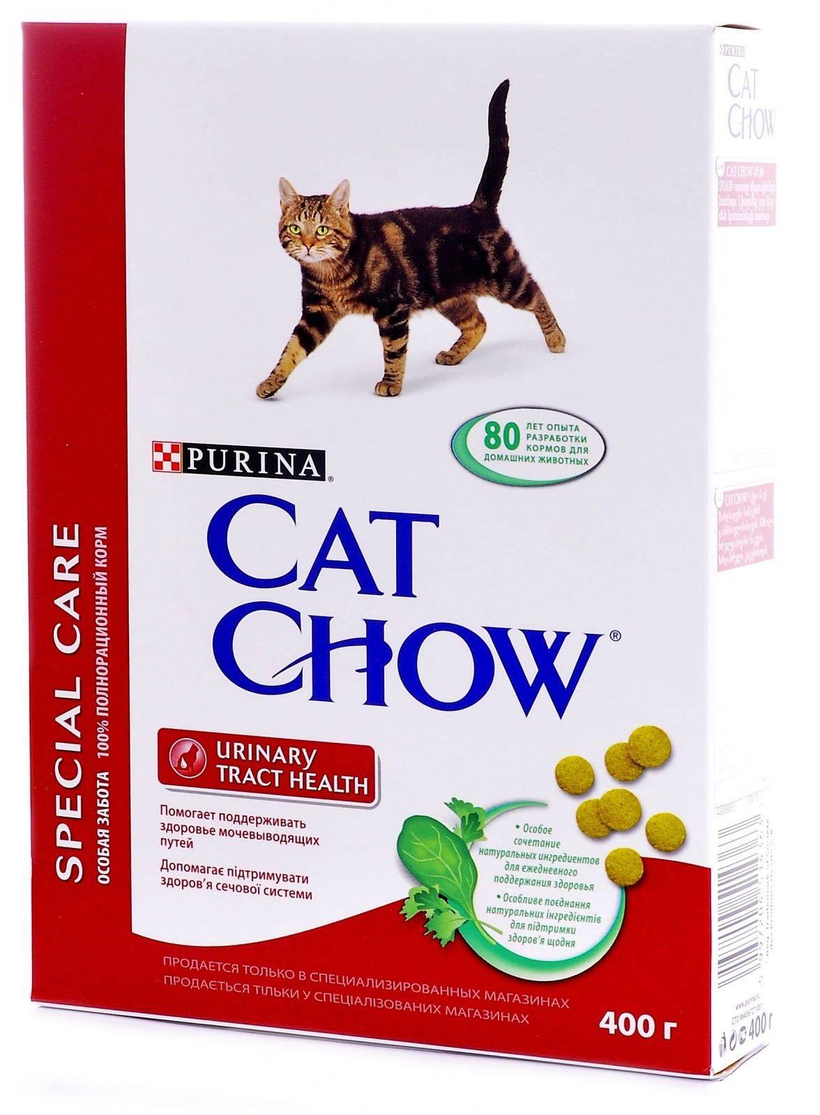 Питание кошек при мочекаменной болезни | наши лучшие друзья