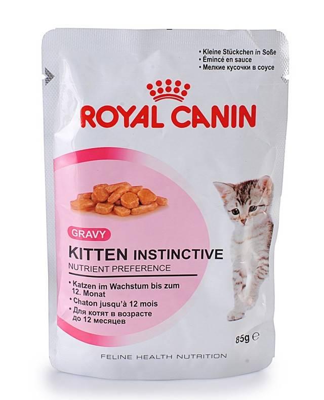 Корма для кошек супер-премиум-класса: рейтинг лучших производителей, список и обзор самых элитных марок кормов для котов, отзывы владельцев