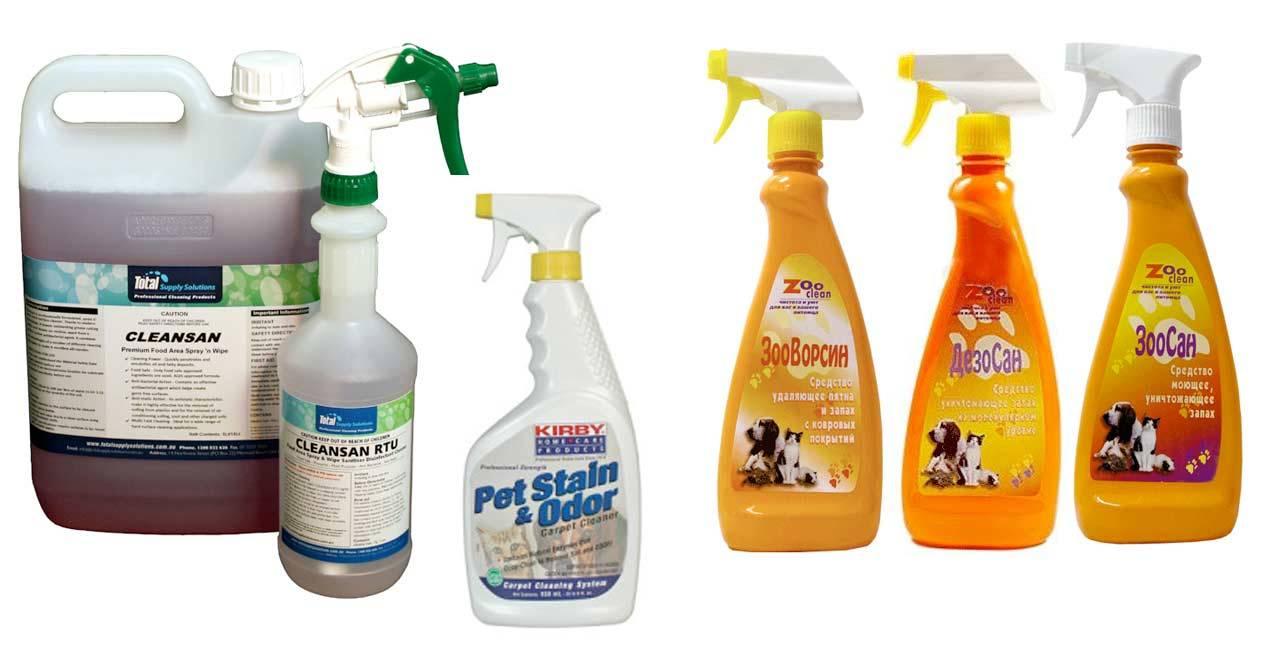 Как избавиться от запаха кошачьей мочи в квартире, в домашних условиях