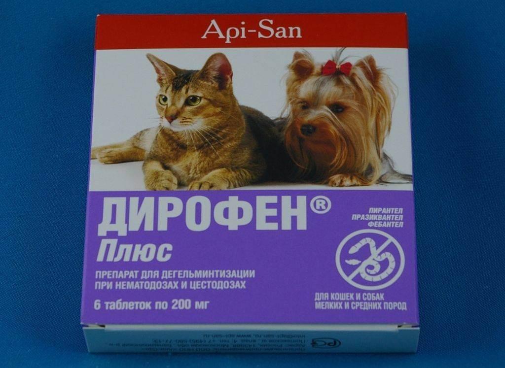 Дирофен для кошек: инструкция по применению препарата в таблетках и суспензии