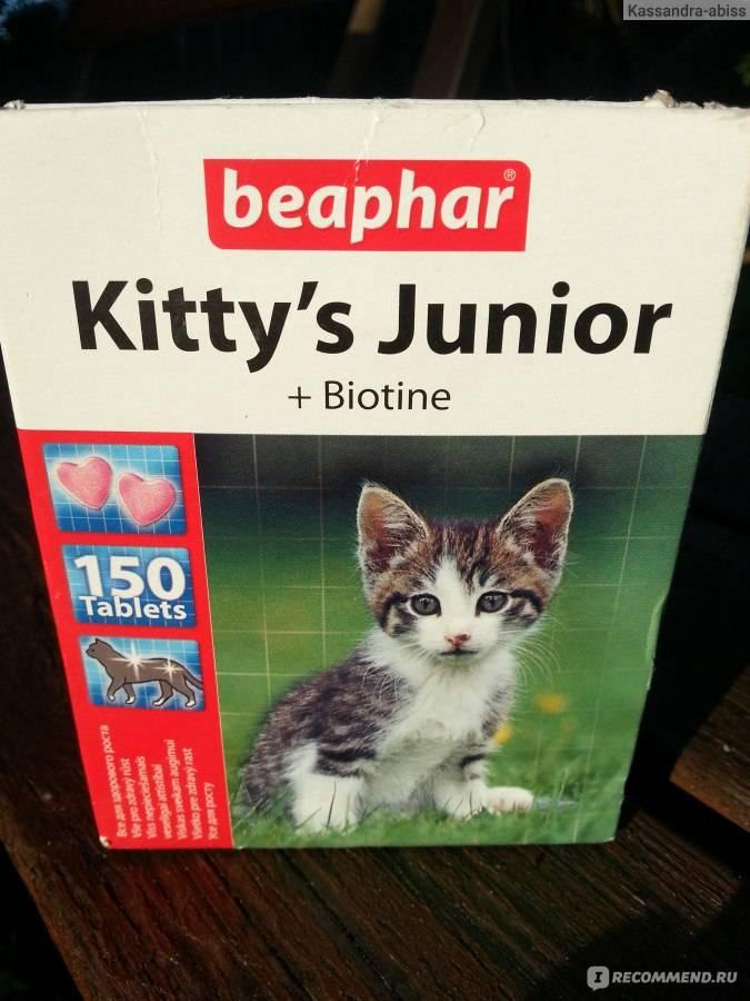 Витамины и подкормки для кошек beaphar: описание, виды и отзывы