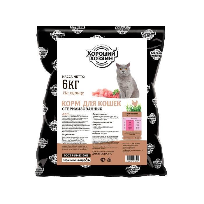 Рейтинг лучших кормов для кошек и котят 2020 года для пушистых любимцев