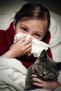 Аллергия у британца