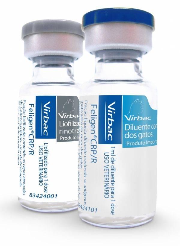 Вакцина для кошек фелиген: состав и форма выпуска, инструкция по применению, показания и противопоказания, аналоги, отзывы