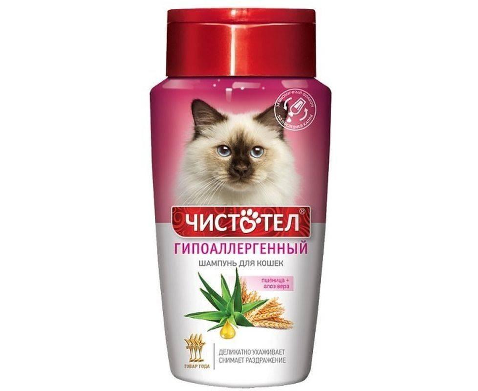 Чистотел – универсальное средство для кошек