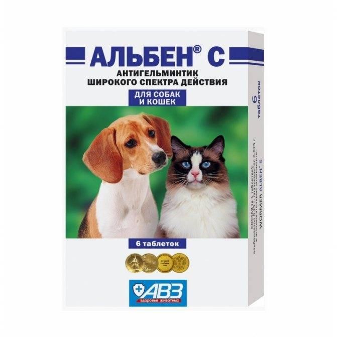 Капли от блох для кошек и котов
