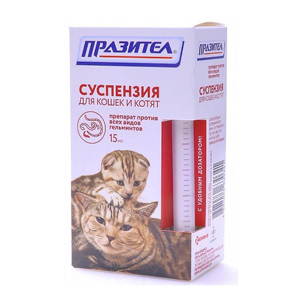 Цестал для кошек: способ применения, отзывы и дозировка