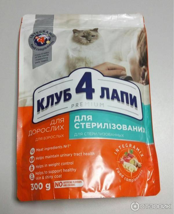 Чем кормить кота после кастрации — натуральными продуктами или промышленными кормами