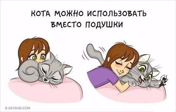 Почему стоит заводить кошку: 10 веских причин