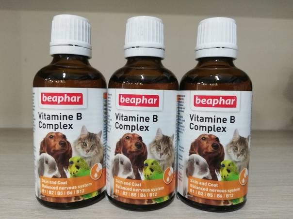 Качественные ли витамины для кошек беафар? дозировка, состав, преимущества и недостатки, цены, отзывы владельцев и ветеринаров.
