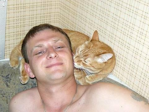 Почему кот постоянно вылизывается