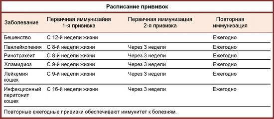 Прививка от бешенства кошке: виды вакцин и сроки вакцинации, отзывы