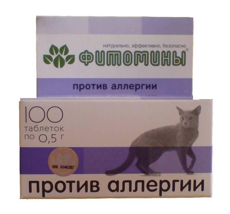 Какие таблетки принимать при аллергии на кошек