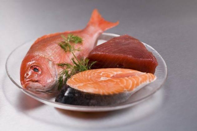 Можно ли кормить кошку рыбой и почему нельзя давать ее сырой - лапы и хвост