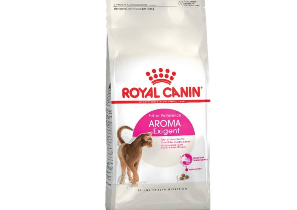 Какой производитель кормов лучше hill's или royal canin | в чем разница