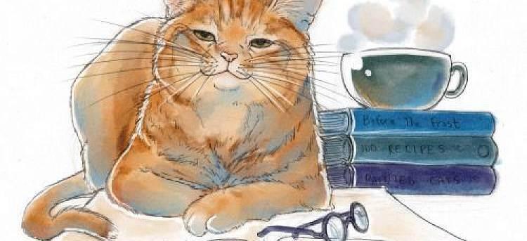 Как выбрать лучшую породу кошек для дома — портал о животных lapy-i-hvost.ru