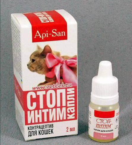 Средства для кошки против гуляния: обзор гормональных капель и таблеток