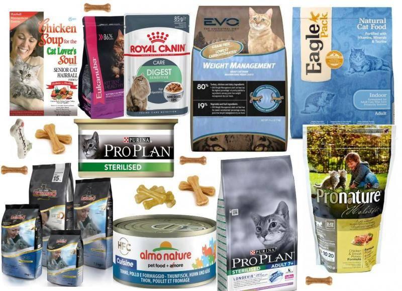Влажные корма для кошек супер-премиум-класса: состав, марки, выбор