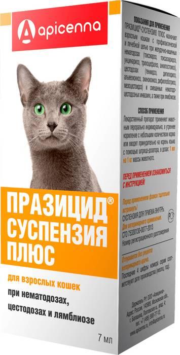 «празицид плюс» (суспензия) для кошек и котят: инструкция по применению