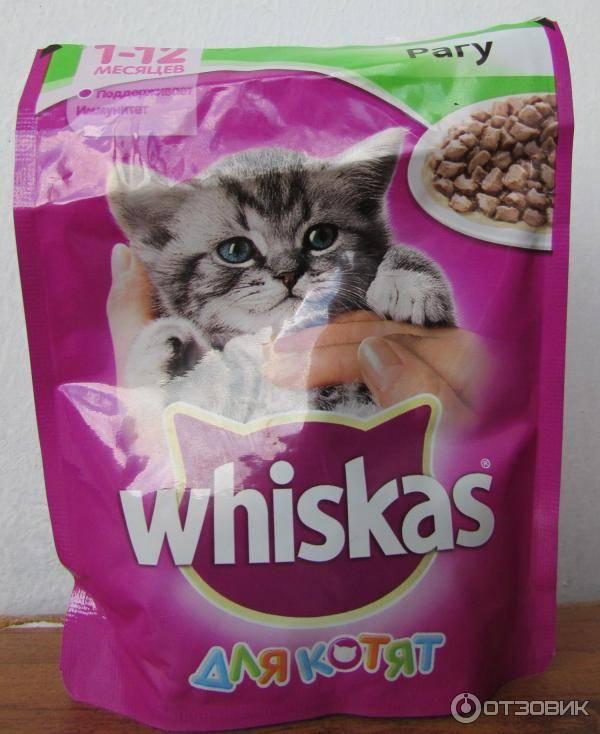 Корм вискас: состав, вред для кошек, польза и виды