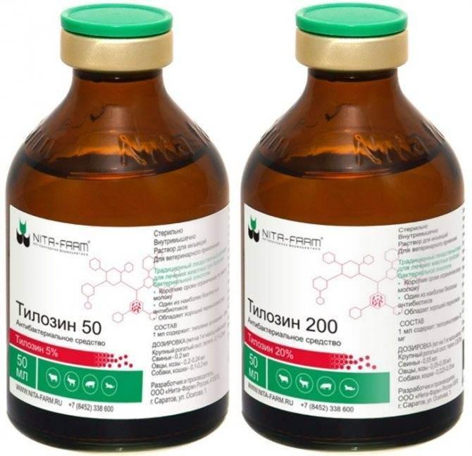 Тилозин для собак │ инструкция по применению тилозина-50 собаке