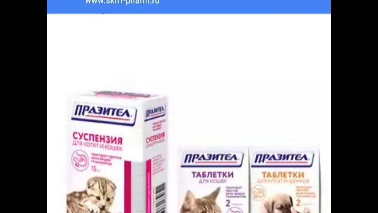 Цестал для кошек