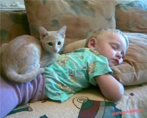 Что говорят экстрасенсы о кошках. кое-что о целебной силе кошек. магия кошек против нечистой силы