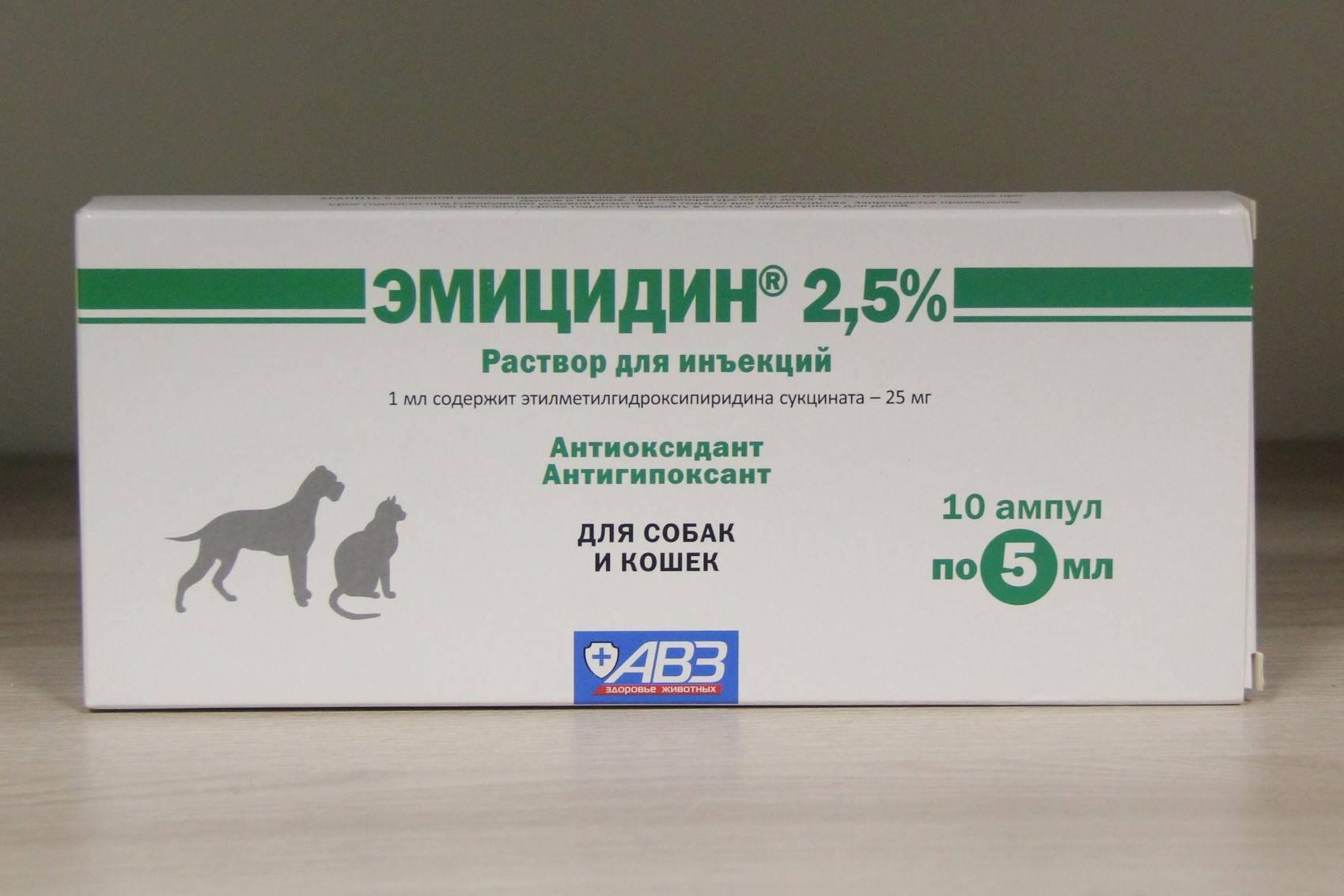 Эмицидин для кошек при отравлении - врач-советник