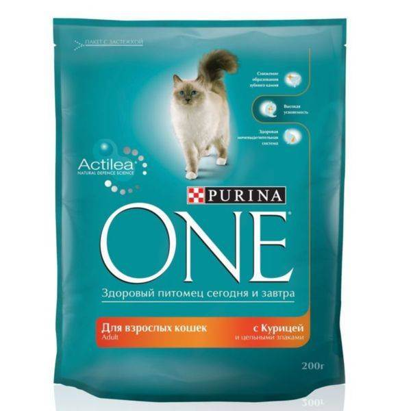 Промышленные корма для кошек советы ветеринаров