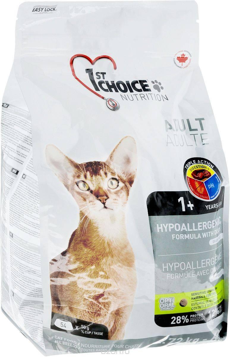 Какие симптомы аллергии на корм у кошек: признаки и фото