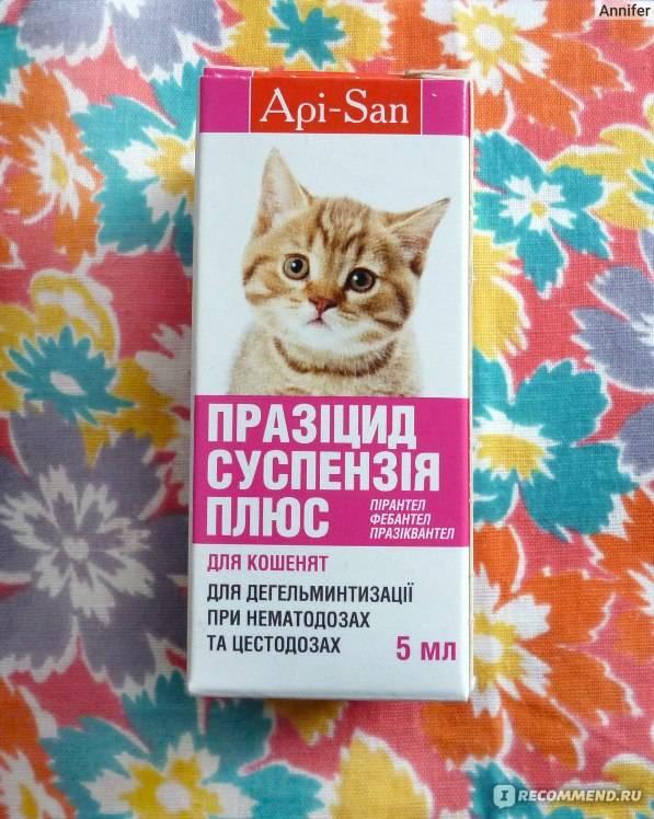 Празицид для кошек:  суспензия, капли, таблетки от паразитов