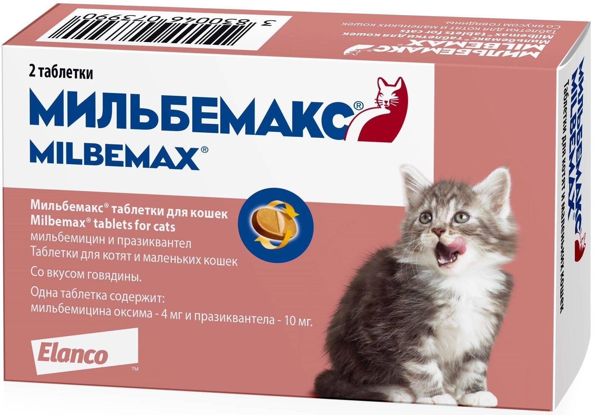 Мильбемакс для кошек: инструкция по применению, отзывы ветеринаров