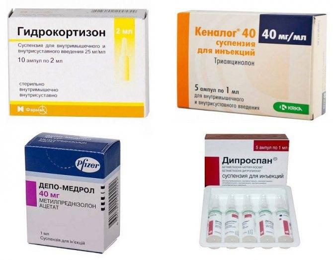 Артрит у кота симптомы лечение