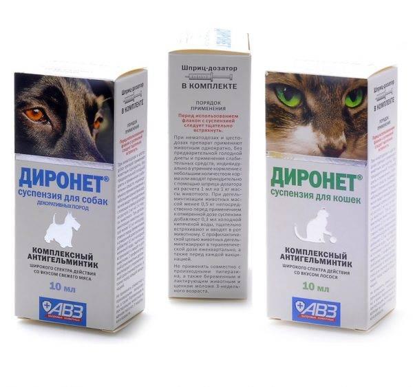Диронет для кошек: состав, применение, противопоказания, доза
