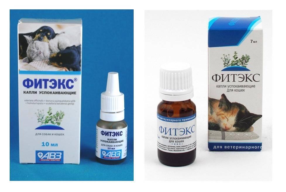 Фитекс для кошек: успокоительные капли и их производители, состав и инструкция по применению, цена и отзывы