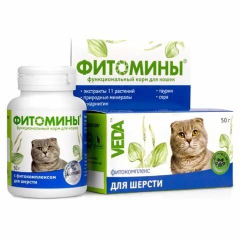 Линька у кошек - что это, как бороться (витамины, капли, шампунь) | справочник садовской