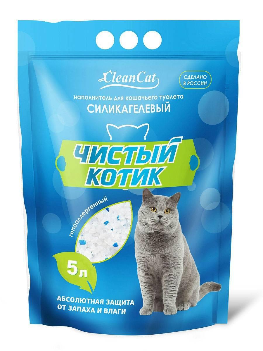 Кошка ест наполнитель для туалета